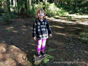 standing on a tree stump