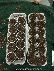 Gardening with the Toddler dirt in egg carton