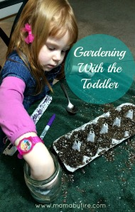 Gardening with the toddler Z watering