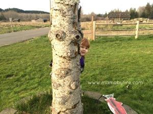 Discovering Washington Theler Center Wetlands Z peeking around a tree