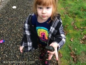 Easy garden markers finding rocks